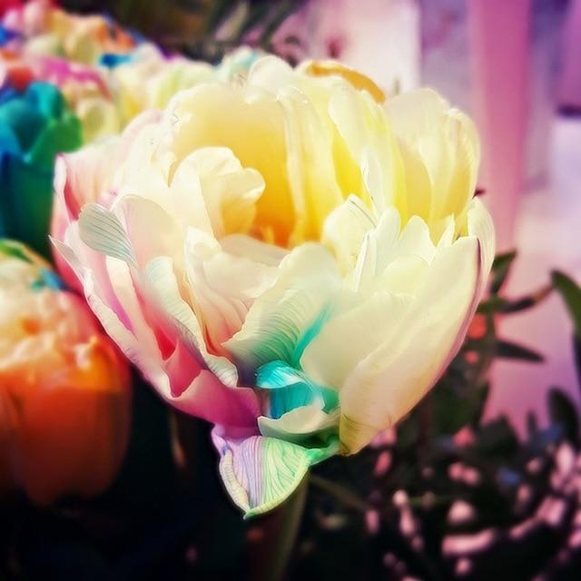 5D-DIY-Diamond-Painting-Cross-stitch-Colored-Flowers-Crystal-Needlework-Full-Square-Diamond-Embroidery-Paintings-Mosaic.jpg_640x640