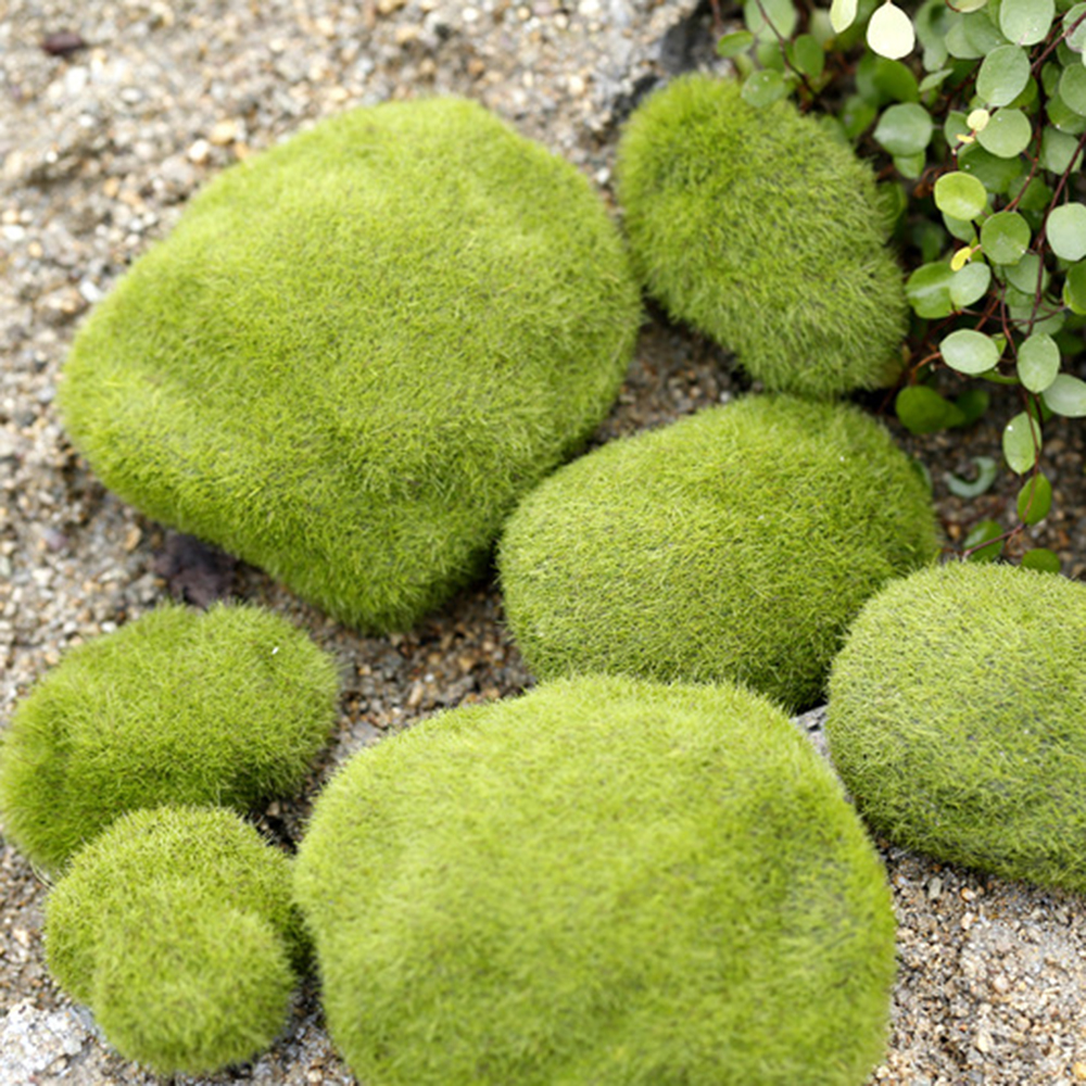 8pcs Artificial Micro Landscape Aquarium Decoration DIY Mini Fairy Green Moss Fuzzy Stones Grass Plant Poted Home Garden Decor