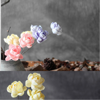 One Piece Peony Natural Dried Flower With Malleable Iron As Rod Handmade Plant Combination Home Decoration