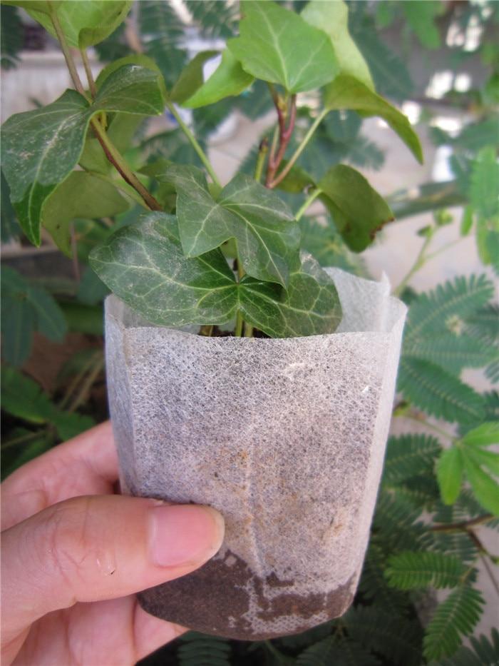 wholesale 1000 pcs plant-fiber Nursery Pots Seedling-raising bag Garden Supplies Can degrade Environmental protection 12*12cm