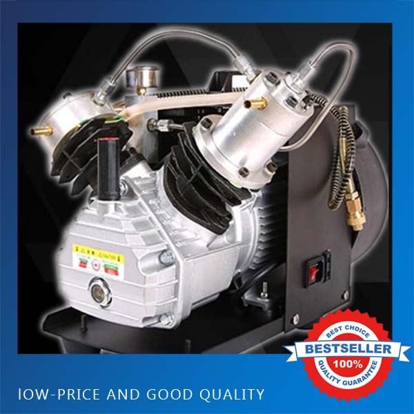 Double Cylinder Electric Air Pump Paintball Air Compressor High Pressure PCP Rifle Air Pump For Max 12L automatic stop double cylinder pcp electric air pump 220v 50hz high pressure paintball air compressor with breath filter