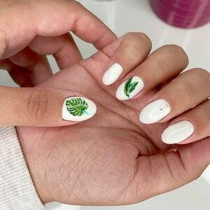 Image 2 - 1 גיליון טרופי צמח עלה ירק Monstera פלמינגו נייל דבק מדבקת נייל אמנות גלישת סגנון גיליונות