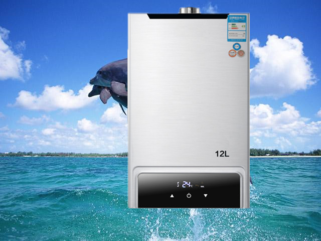 2019 Direct Flue Type Selling Flue Type Lgp Instant / Tankless 12l Gas Lpg Hot Water Heater Propane Stainless 2800pa
