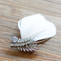 Fashion Sliver Zirconia Brooches Leave Feather Brooch Pins Evening Dress Accessories