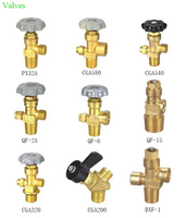 choose one valve oxygen argon co2 nitrous oxide Acetylene refrigerant helium gas reducing valve QF2A CGA580 for cylinder tank