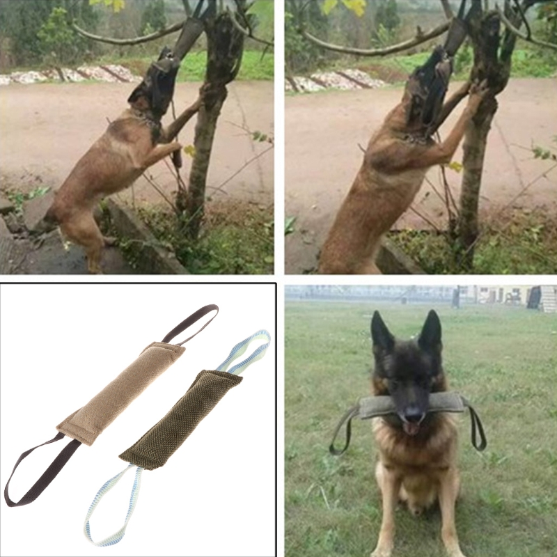 2pcs pack Pet Dog Clean Teeth Bite Molar Toy Dog Training Toys for Police Canine Schutzhund Dog Product Interactive Toys in Agility Equipment from Home Garden