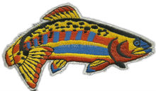 5.3″ Rainbow Trout Fish Fishing Collectors Embroidered Motorcycle Biker Vest Patch SEW ON IRON ON Badge Emblem