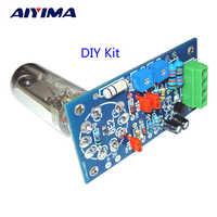 AIYIMA-preamplificador de tubo 6E2, tarjeta de Audio VU, placa controladora de nivel de potencia, indicador de volumen, preamplificador de señal de tono al vacío, Kits Diy