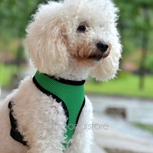 Adjustable Soft Air Mesh Pet Dog Puppy Doggie Step in Vest Mesh Walking Harness 5 Colors