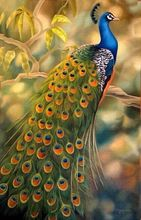 hand-painted stretched  framed oil wall art  Beautiful peacock forest  home decoration  Landscape canvas oil painting цены