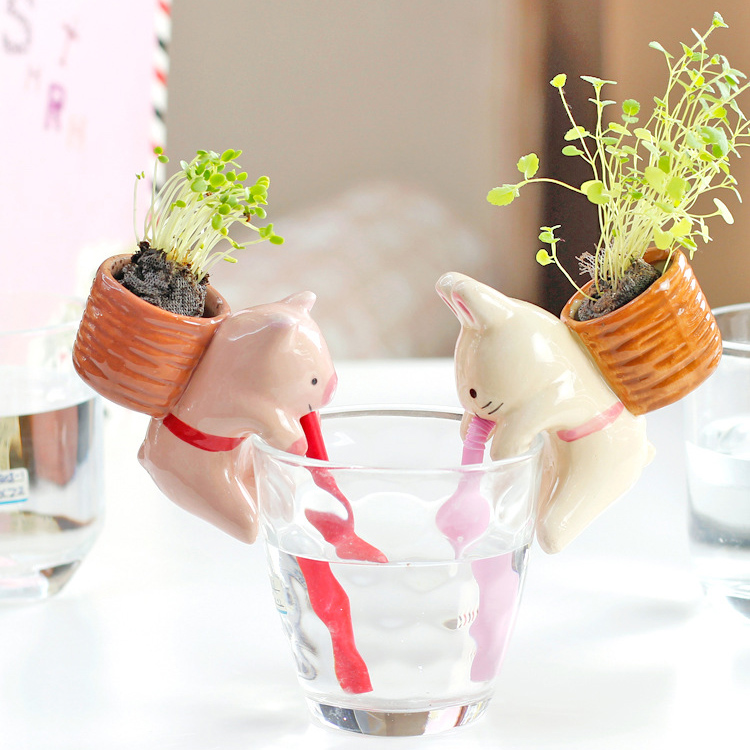 Animal Water Absorption Potted Plant Mini color random Green Ceramic Desktop Pot Seeds lovely office