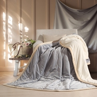 Winter Thicken Blanket Polyester Cotton Double Layer Fluffy Warm Throw Sofa Bed Plane Travel Plaids Adults
