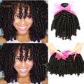 Дешевые Бразильский Виргинский 5 Bundle Afro Kinky Вьющиеся Волосы Тетушка Fummi Волосы Бодрый Вьющиеся 7А Класс Virgin Необработанные фуми Человеческие волос