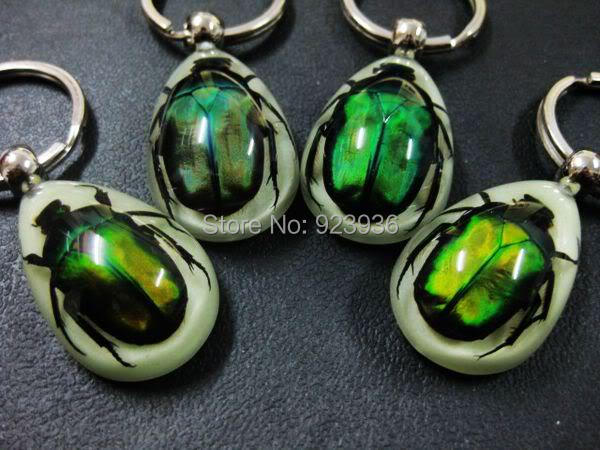 FREE SHIPPING 16 PCS REAL GREEN BEETLE GLOW LUCITE KEYRING KEYCHAIN JEWELRY TAXIDERMY GIFT