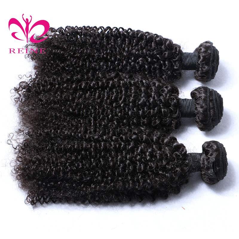 Reine Afro Kinky Curly Hair Bundles Malaysian Human Hair Weave Bundles Natural Color Non Remy Hair Extensions Can Be Mixed