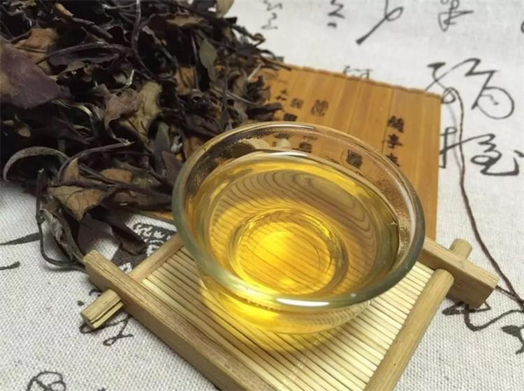 fuding white tea (9)