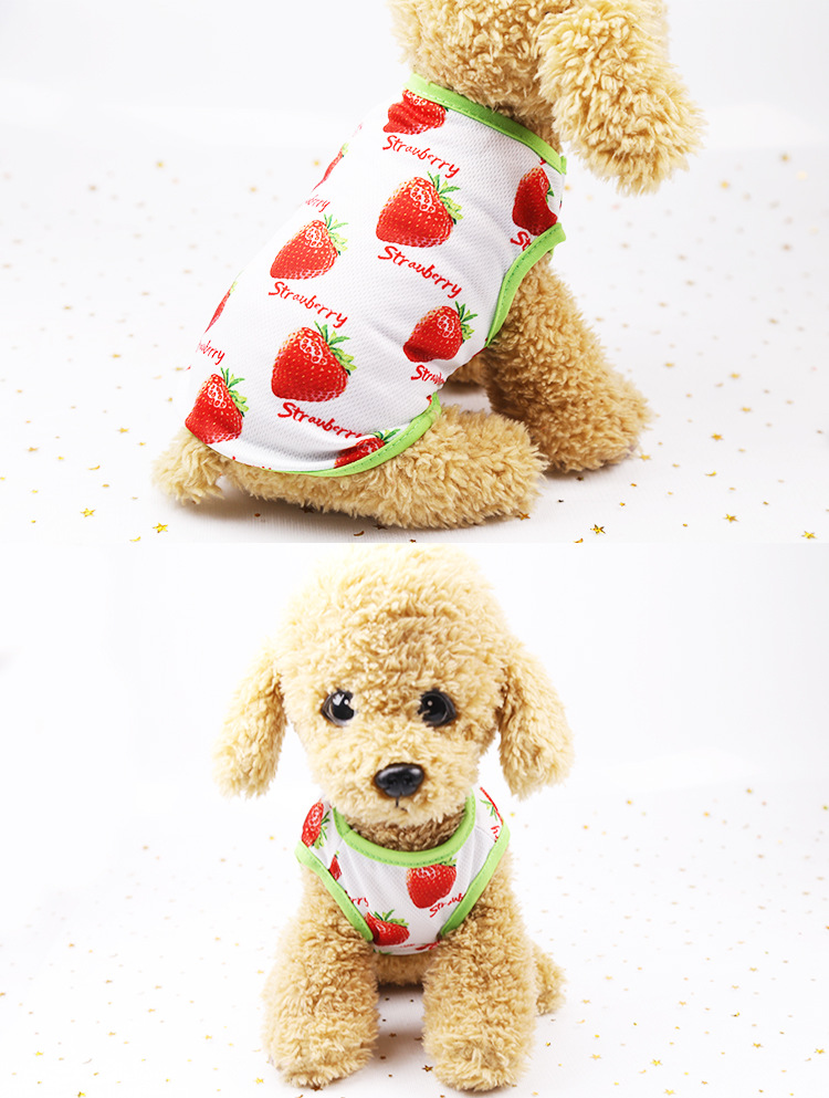 Fruit Print Little Dog Summer Dress (16)