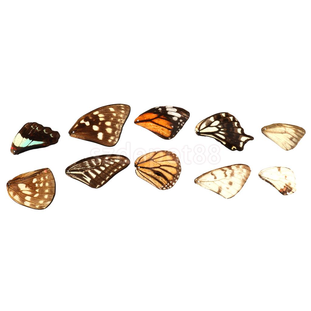 Resin butterfly wing handmade diy craft supplies jewelry for Craft and jewelry supplies