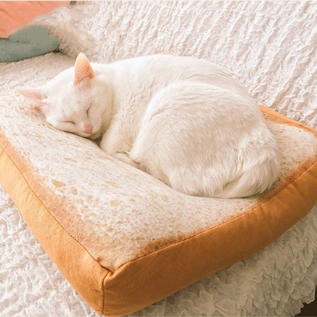 Cat Pet Mat Toast A Slice of Sliced Bread Weibo The Same Piece of Toast Bread Slice Cushion Soft Crystal Velvet Cat  Sleeper Pat