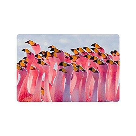 Doormat Pink Flamingos Flamingo Indoor/Outdoor/Front Welcome Door Mat