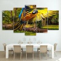 HD Baskılı 5 Adet/takım polet papağan kanatları Boyama Tuval Sanat Baskı salon dekor baskı posteri resim tuval Ücretsiz kargo