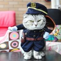 Cat Clothes Pirate