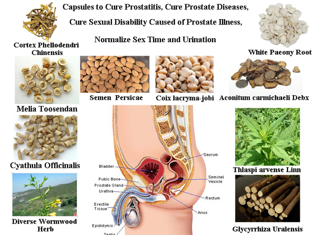 Formula Of Natural Herbal Ingredients To Cure Prostatitis -1198
