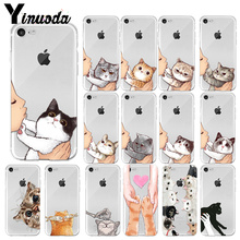 Yinuoda No Kisses cute Cat  Colorful Cute Phone Accessories Case for Apple iPhone7 8 6 6S Plus X XS MAX 5 5S SE XR Cellphones