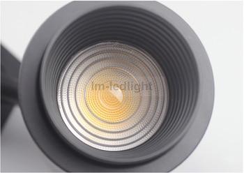 Testine A Led | Regolare Lo Zoom 3 Filo Muro Faretti 30 W In Bianco Nero Pista Testa Luci Pista Pannocchia Veloce Nave Libera 30 Pz