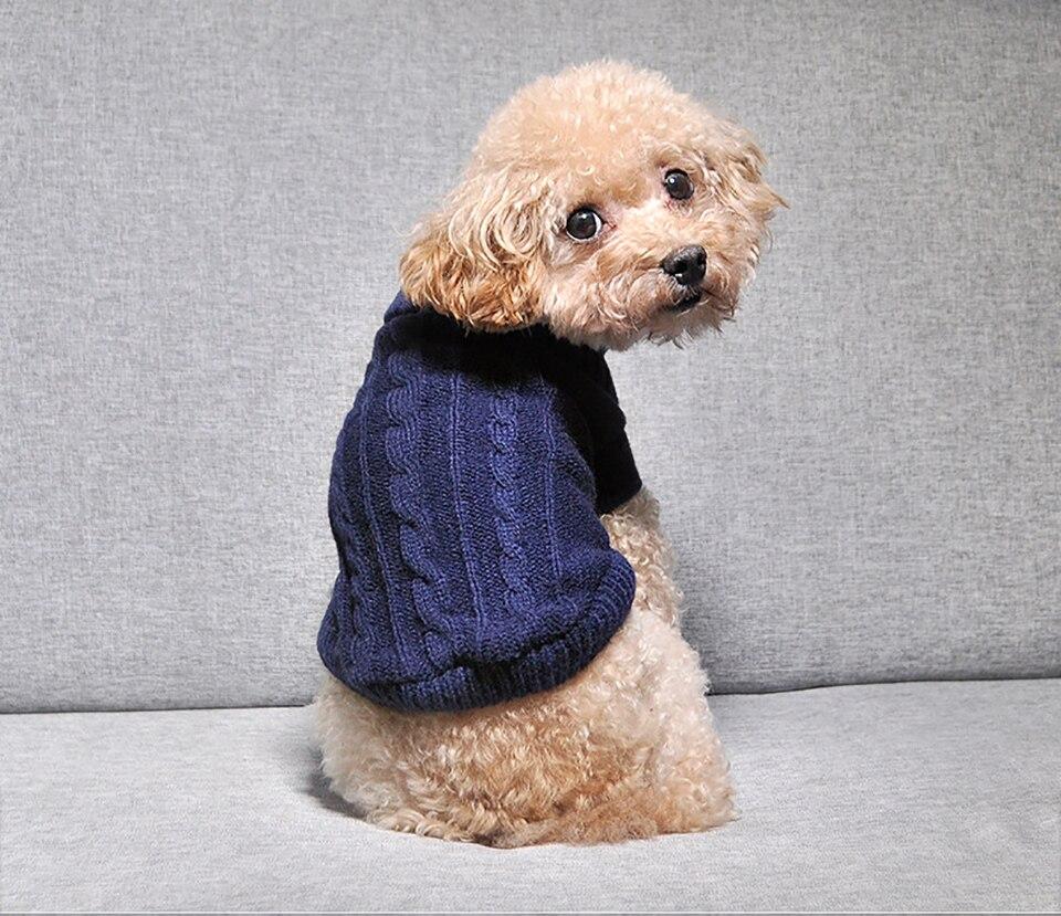 Roupa de Inverno para Pets | Roupa para cães | Roupa para gatos