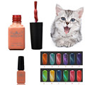 High Quality  12 Color UV Glue Nail Polish Manicure LED Cats Eye Color Dark Color 8ML  NET WT Anne