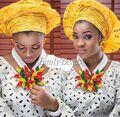 Latest mulheres jóias definir conjuntos de jóias traje de casamento africano nigeriano cristal broche de flor para colar frete grátis AIJ931
