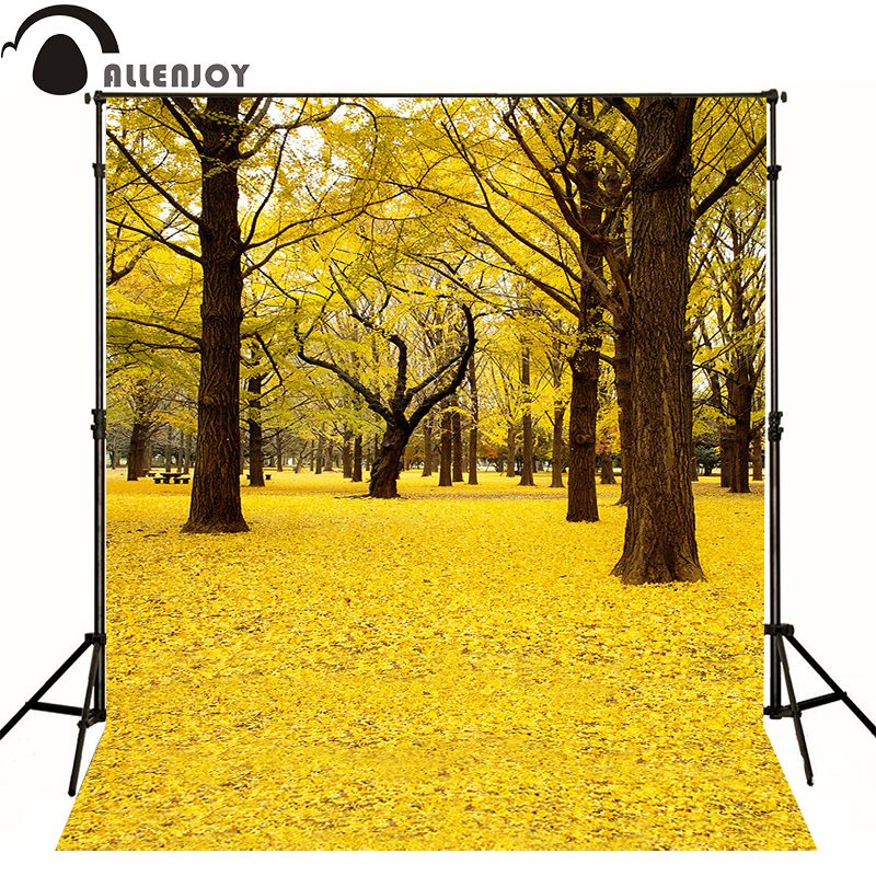Allenjoy photographic background Ginkgo tree leaves autumn park kids vinyl boy photocall photo studio white 4 4 electric violin solid wood 4 0 1 silvery white color 5 string