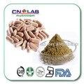 Envío Libre cápsula de 500 mg X 100 pices orgánica tongkat ali 200:1 Hombres Salud suplemento