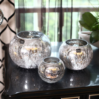 Europe Ice Crack Silver Plating Glass Vase Plant Dried Flower Hydroponics Ball Shape glass vase Vase home decoration accessories
