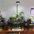 5 Вт USB гусиная шея led растительные Ландшафтные огни Черный Серебристый LED Аквариумное освещение 6000 К водное растение огни эко-бутылки