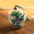 Botella de cristal Retro collar de la joyería DIY algas Secas naturales Amatista colgante, collar Plateado bronce collar para las mujeres