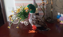 simulation duck large 27x24cm colourful feathers duck model toy polyethylene feathers handicraft decoration gift t401