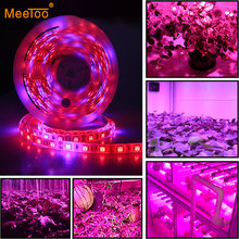 LED Phyto Lamps Grow Lights SMD 5050 LED Strip Light DC12V Red Blue 3:1 4:1 5:1 for Greenhouse Hydroponic Plant Growing 5m/lot(China)