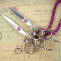2pcs/set Professional Japanese 440C purple dragon hairdresser scissors set 5.5/6inch high quality cutting & thinnig scissors