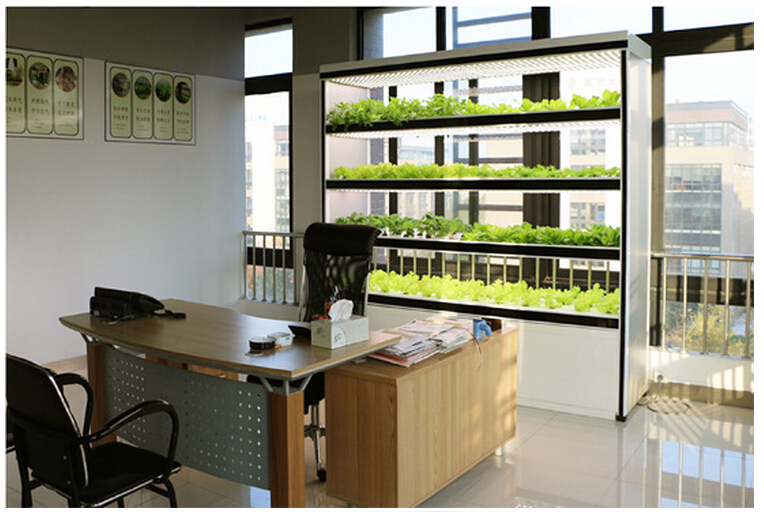 900w Intelligent Auto Control Customized Plant Factory Home