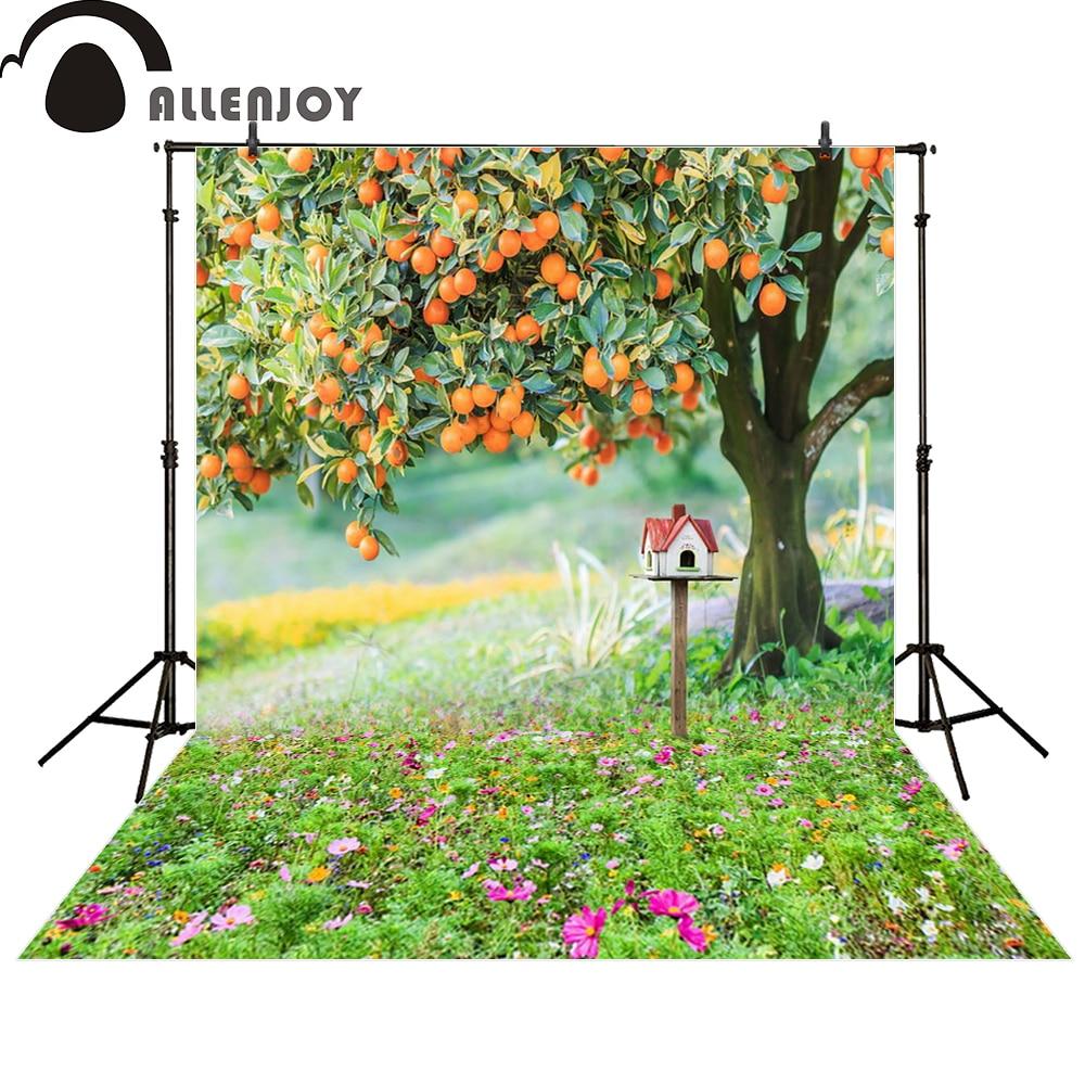Allenjoy photography backdrop tree orange mailbox flower newborn photo studio photocall background original design