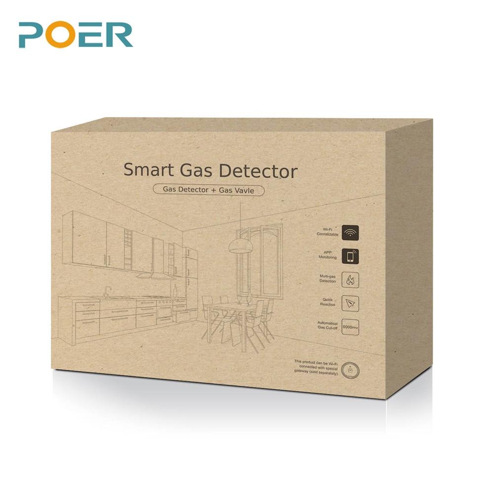 433Mhz Perdita di gas naturale GPL Butano Propano Smart Detector - Strumenti di misura - Fotografia 4