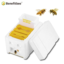 Benefitbee Hive Box Harvest Beehive Queen Pollination Beekeeping For Bee Mating Copulation Reserve Tool pk wood