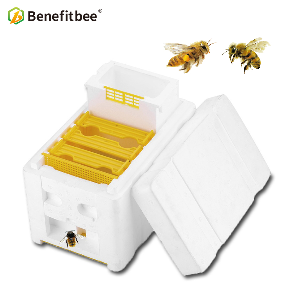 Benefitbee Hive Box Harvest Beehive Queen Pollination Beekeeping For Bee Mating Copulation Queen Reserve Beekeeping Tool pk wood