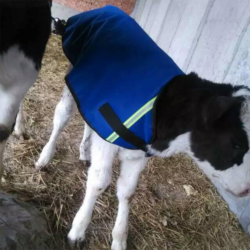 1pc Blue Color Calf Warm Clothes Thicked and Waterproof Warst Coat For Cattle Dog Horse Medium Large Pet in Spring Autumn Winter
