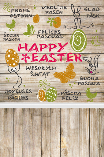 300x500cm Thin Vinyl Photography Backdrops Photo Studio Background for Children Foto Hot Sell And Easter FH00E easter day basket branch bunny photo studio background easter photography backdrops page 8