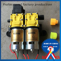 12V DC Double core Power Pump Agricultural Electric Sprayer High pressure Pump(100 meters to fight drugs)