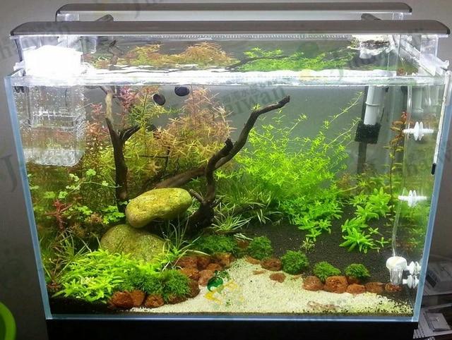 TWIPS led lighting for plant tank plant aquarium design for plant fresh tank save & TWIPS led lighting for plant tank plant aquarium design for plant ...