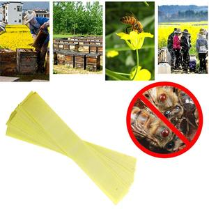 Image 3 - Bee Green Mite Strip Professional Fast Killer Used In Bee Breeding Green Ring Maintenance Bee Tool
